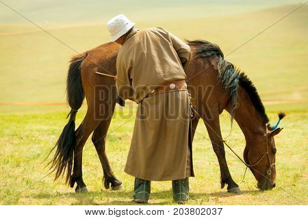 Mongolian Man Grooming Horse Steppe
