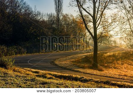 Winding Countryside Road In Late Autumn Fog