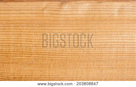 larch wood knot increased zoom photo background