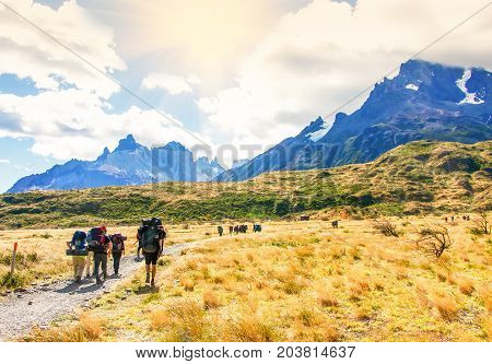 Group of travelers with backpacks walk along a trail towards a mountain ridge.Backpackers and hikers style. Concept of active leisure.