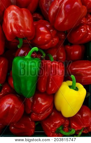 Colored of pepper bell. Pile of pepper bell. Background and texture.