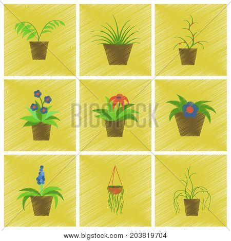 assembly flat shading style icons houseplants botanical