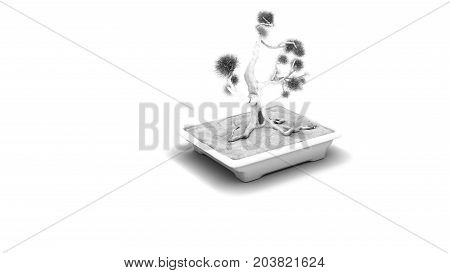 3D rendering.Coniferous bonsai classic shape. Rectangular pot in Oriental style. A perennial tree for the house. Japanese and Chinese art. Occlusion visualization.