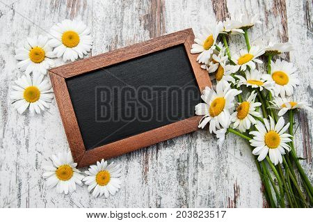 Camomile with black board on a table