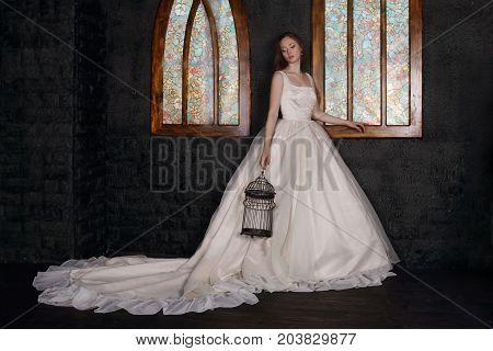 Beautiful woman in long dress holds bird cage near windows in black studio