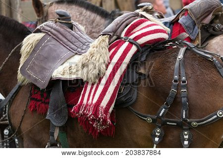 June 3 2017 Machachi Ecuador: striped traditional poncho folded and tied behind saddle in the Andes