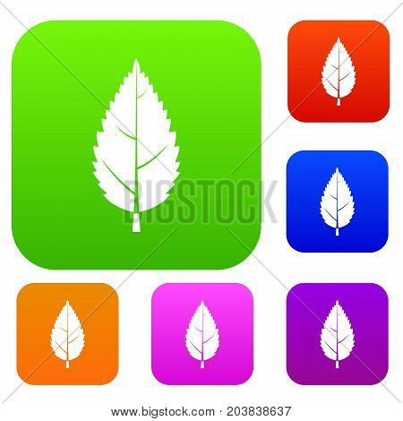Hornbeam leaf set icon color in flat style isolated on white. Collection sings vector illustration