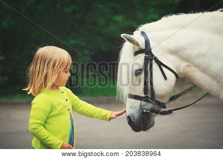 little girl touching big horse in nature, kids learning animals