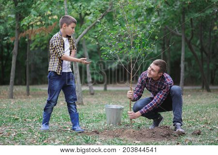 Smiling boy and man planting a little tree with bucket in the garden, children planting a new tree. Concept: new life, environmental conservation. A man is teaching his younger brother to plant a tree.