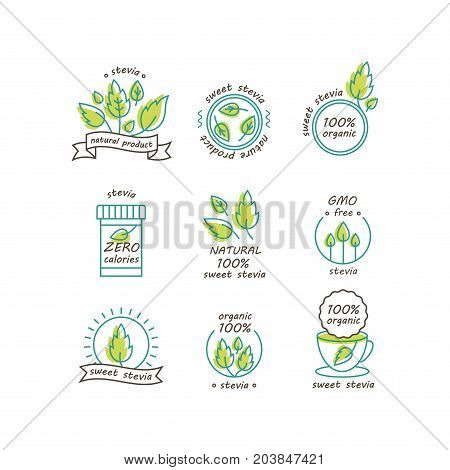 Vector set of stevia labels, logos, badges and icons. Natural sweetener design element. Organic stevia icon isolated. Eco safe stevia badge design.