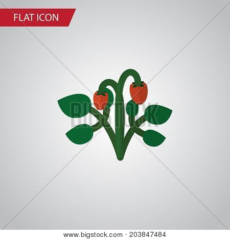 Berry Vector Element Can Be Used For Strawberry, Berry, Fruit Design Concept.  Isolated Strawberry Flat Icon.