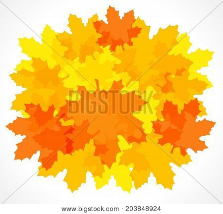 Autumn red and yellow maple leaf backround. Design orange maple leaves on white vector backround for card, banner and autumn sale poster template