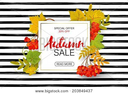 Autumn sale poster with bright colorful leaves, sheet of white paper with lettering. Vector illustration on striped background