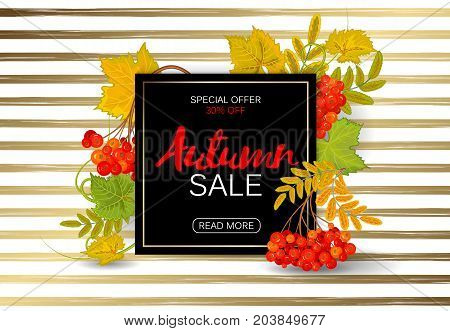 Autumn rowan frame on a golden striped background. Perfect for autumn sale, school or Thankgiving day banners decoration. Vector illustration.
