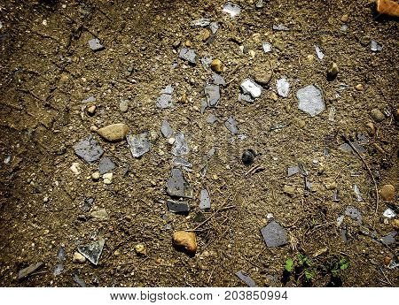 Shards of glass on the ground. Soil. Texture of the soil. Abstract nature background. Ground texture