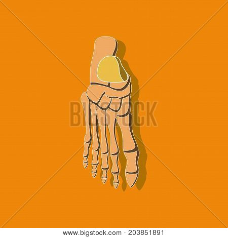 foot skeleton paper sticker on stylish background