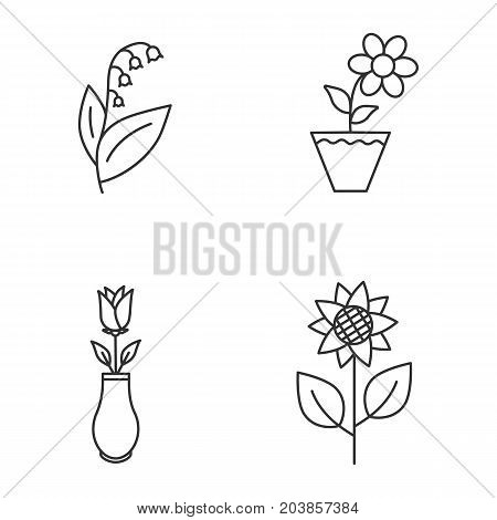 Flowers linear icons set. Lily of the valley, crocus in flowerpot, rose in vase, sunflower. Thin line contour symbols. Isolated vector outline illustrations