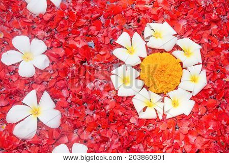 Spa flowers background arranged in the water