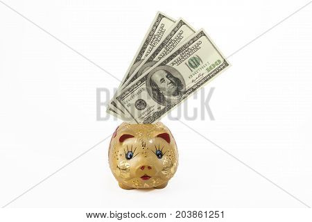 Saving, putting dollars into piggy bank with clipping path. financial and saving concept