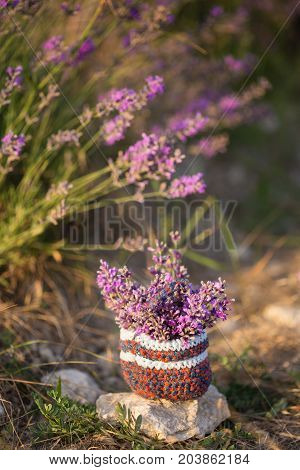 Bunch Of Lavender In Small Knitted Basket