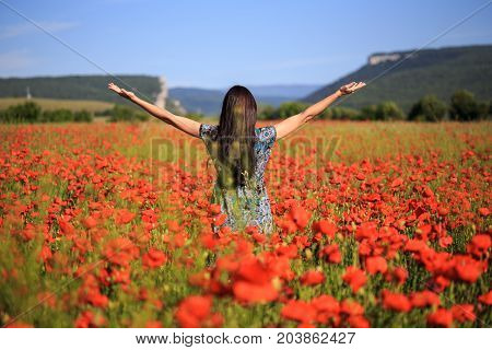 Woman Stands With Open Arms On Summer Poppy Field