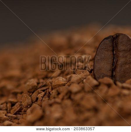 one a coffee grain of granulated coffee