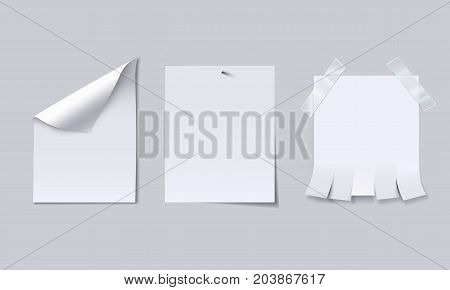 Blank paper sheet with page curl, attached with nail and advertisement with tear off tabs. Vector illustration