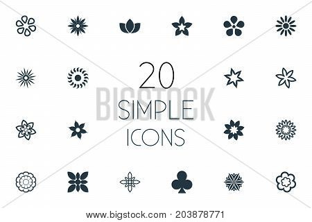 Elements Hibiscus, Ornament, Narcissus And Other Synonyms Bay, Flowers And Daphne.  Vector Illustration Set Of Simple Flower Icons.