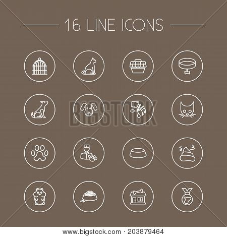 Collection Of Vet, Medal, Pile Of Poo And Other Elements.  Set Of 16 Animals Outline Icons Set.