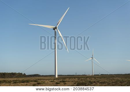 Close Up Of A Wind Energy Farm In Southern Portugal Europe Producing Renewable Energy