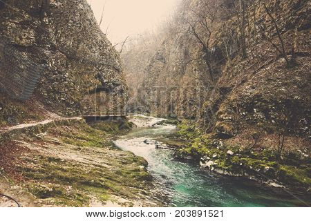 Landscape of curve green water stream flow through foothills rock covered in moss and brown trees in deep forest at Slovenia, Small clear river flow beside mountain foot in autumn jungle