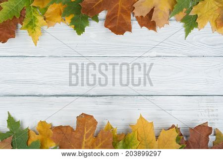 Background with red, orange, brown and yellow falling autumn set leaves