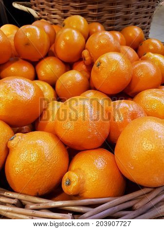 Minneola Tangelo in a pile at a shop