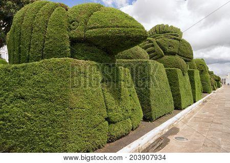 May 16 2017 Tulcan Ecuador: elaborate topiary in the high altitude border town famous cemetery