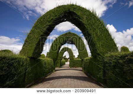 May 16 2017 Tulcan Ecuador: cypress arches in the famous tourist destination cemetery of the border town