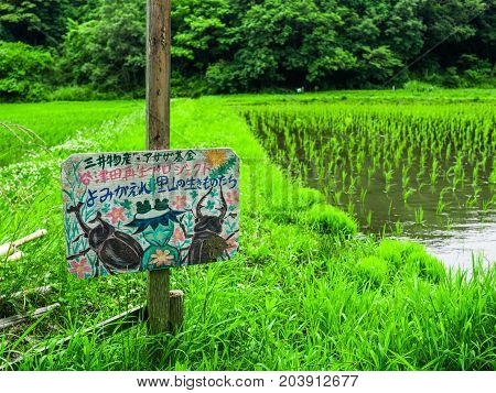 KYOTO, JAPAN - JULY 05, 2017: Informative sign with draw in a rice field in Japan.