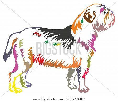 Colorful decorative portrait of standing in profile dog Griffon Belge vector isolated illustration on white background