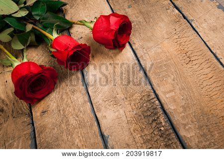 valentine's day three red roses on old wooden table