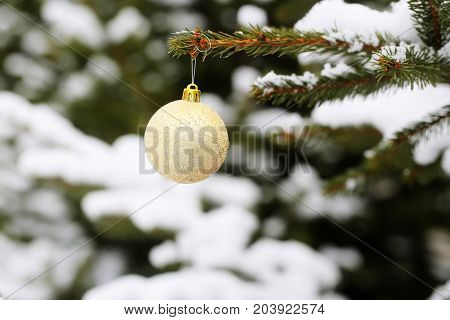 Christmas Ball Hanging On Snowy Branch