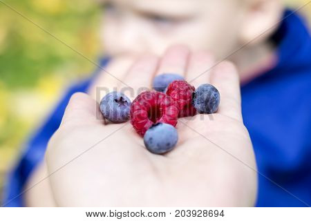 Concept of healthy food. Fresh berries as symbol of whole food.