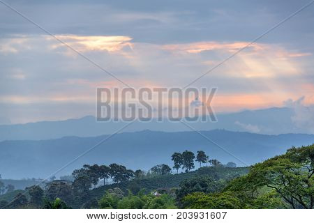 Green hills in the coffee triangle region of Colombia around sunset