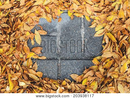 The fallen leaves are creatively folded on a concrete pavement top view. Autumn background with blank space for text centered. Autumn Approach Season Change Concept