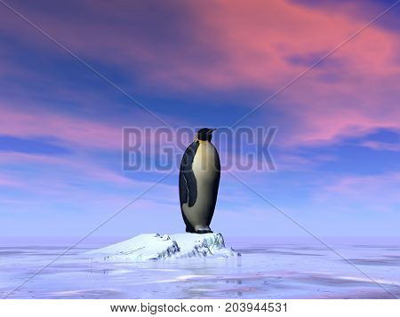 Single emperor penguin standing on an iceberg by sunset - 3D render