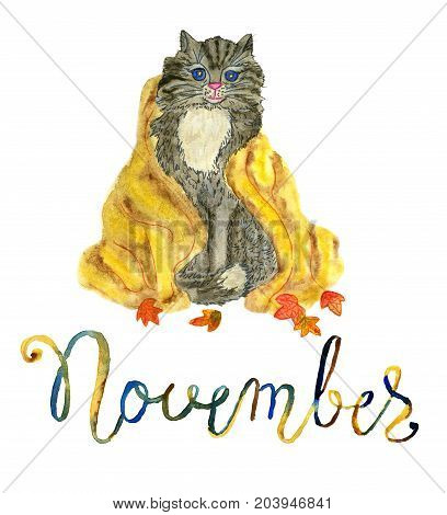 November month. Cat in warm blanket and falling leaves. Watercolor isolated illustration for calendar design page. Concept of twelve months symbols and hand writing lettering