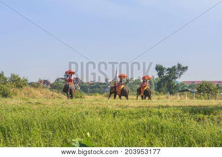 Tourists on elephant ride tourism thailand ayutthaya