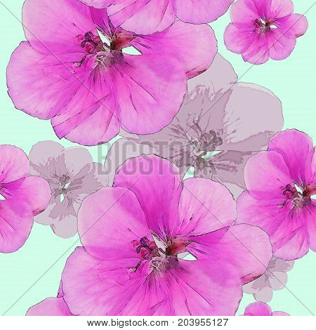 Geranium pelargonium. Texture of flowers. Seamless pattern for continuous replicate. Floral background photo collage