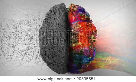 Powerful image of right side / left side of the human brain comparing creativity vs. logic