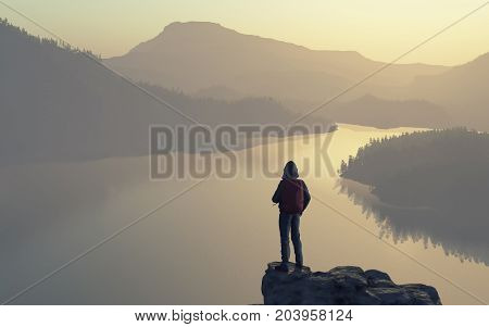 A man looks over the top of the mountain lake and forest. This is a 3d render illustration
