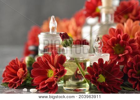 Aromatic ingredients on a gray background close up