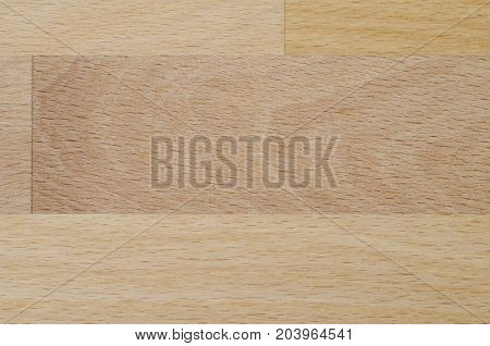 Detailed photo of the structure of natural beech wood boards suitable for texture